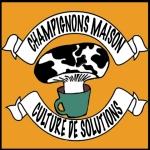 LogoCouleurFond CultureSolution